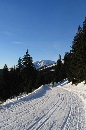 WINTER-BUS im Riesengebirge