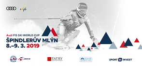 Fis Ski World Cup - Frauen-Weltmeisterschaft 2019 in Spindleruv Mlyn